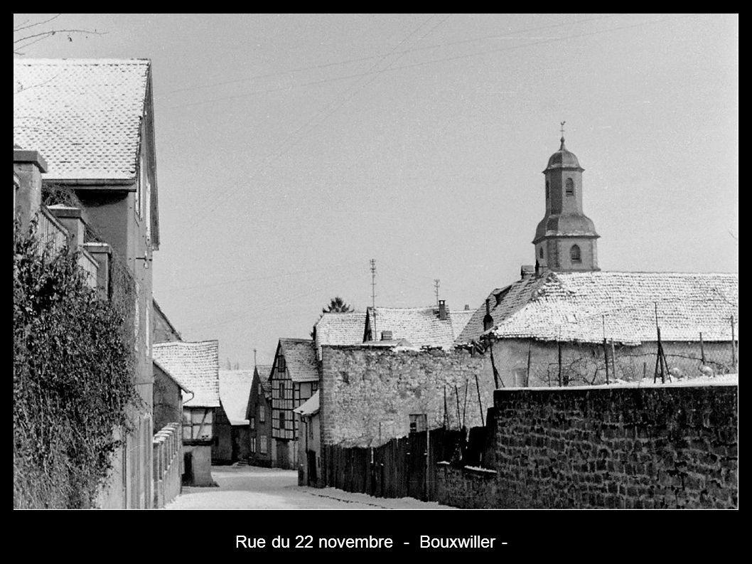 Rue du 22 novembre - Bouxwiller -