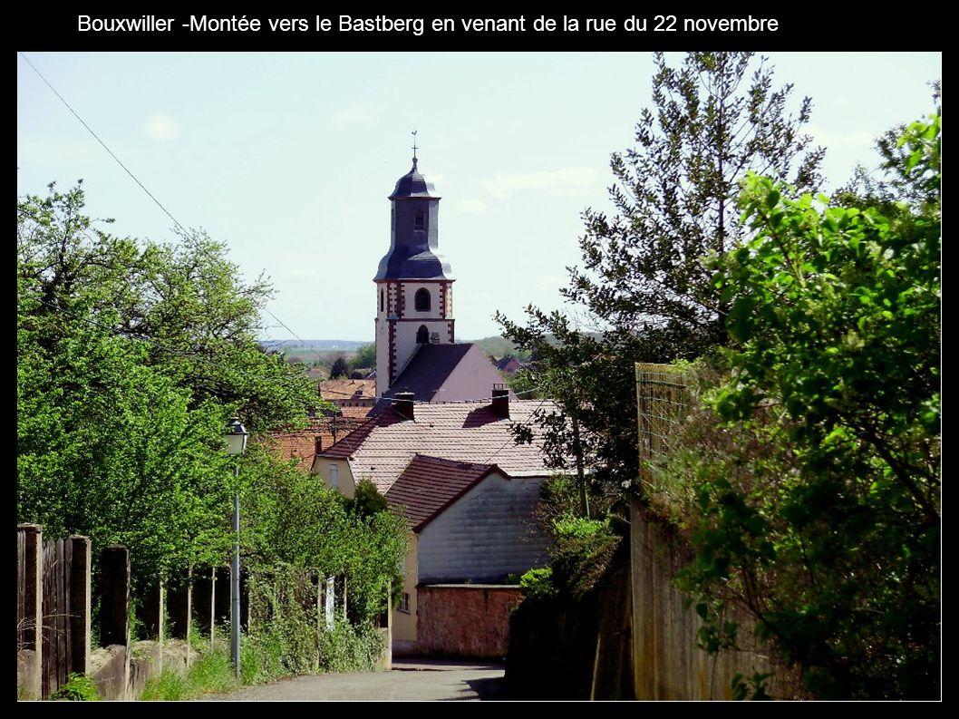Bouxwiller -Montée vers le Bastberg en venant de la rue du 22 novembre