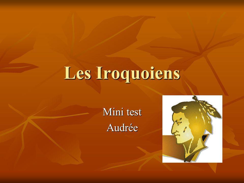 Les Iroquoiens Mini test Audrée