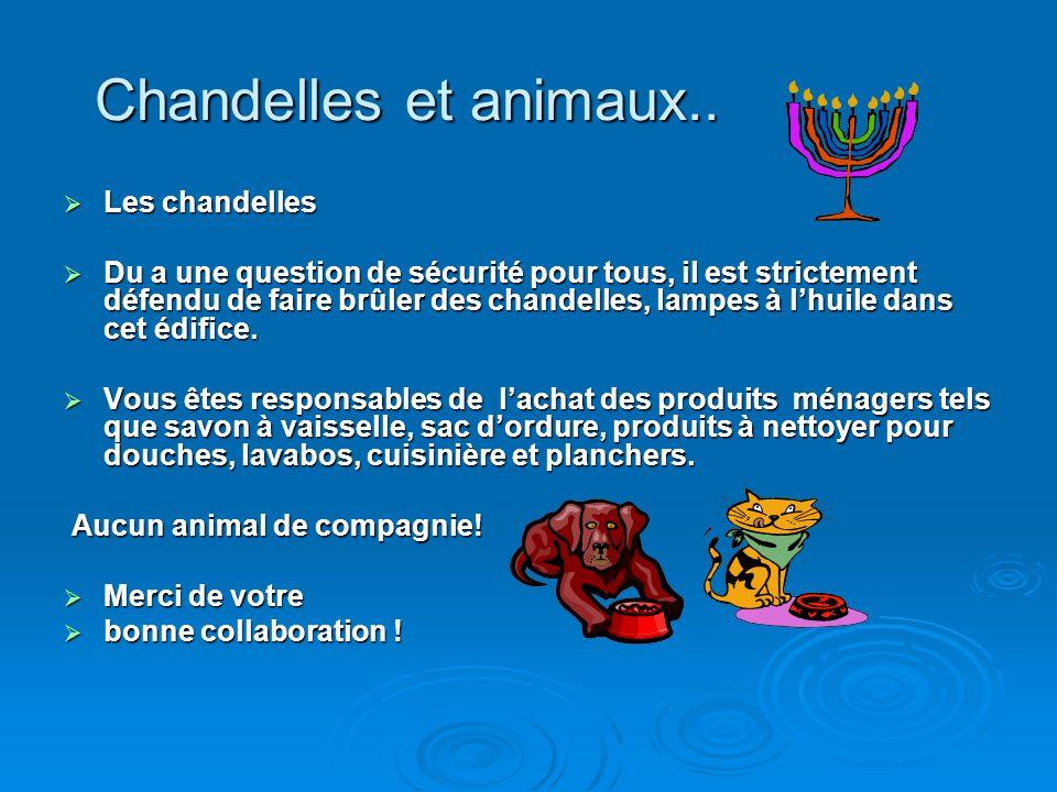 Chandelles et animaux..