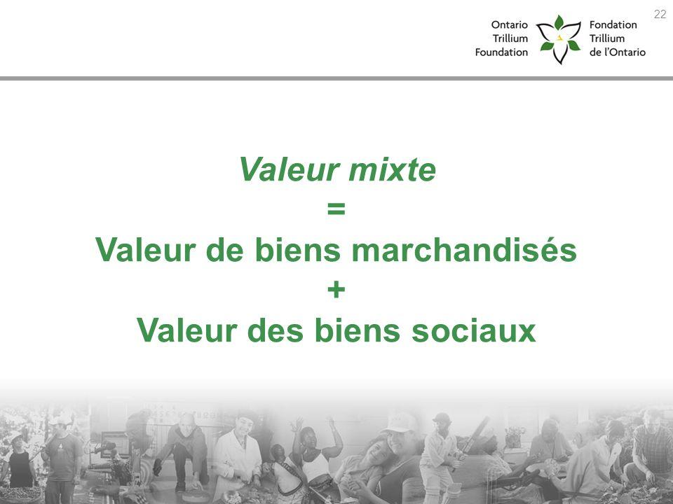 Valeur mixte = Valeur de biens marchandisés + Valeur des biens sociaux 22