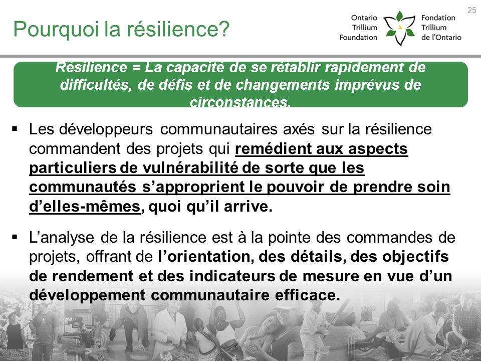 Pourquoi la résilience? Les développeurs communautaires axés sur la résilience commandent des projets qui remédient aux aspects particuliers de vulnér
