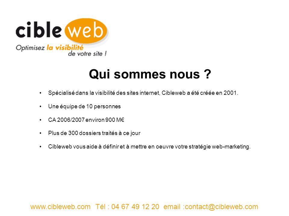 Spécialisé dans la visibilité des sites internet, Cibleweb a été créée en 2001.