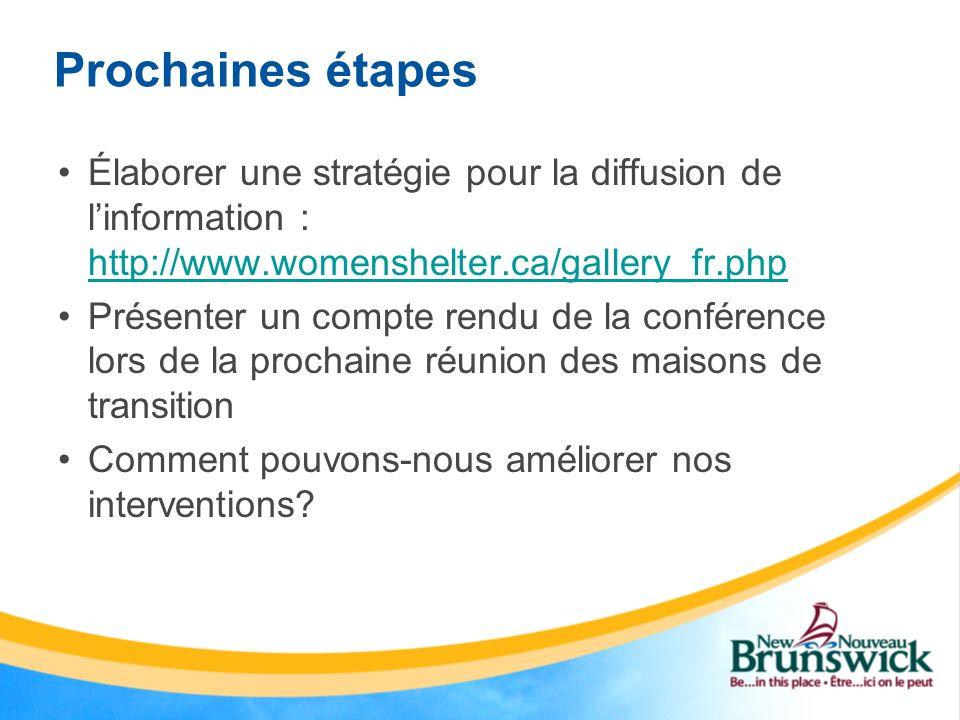 Prochaines étapes Élaborer une stratégie pour la diffusion de linformation : http://www.womenshelter.ca/gallery_fr.php http://www.womenshelter.ca/gall