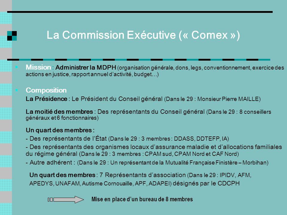 La Commission Exécutive (« Comex ») Mission : Administrer la MDPH (organisation générale, dons, legs, conventionnement, exercice des actions en justic