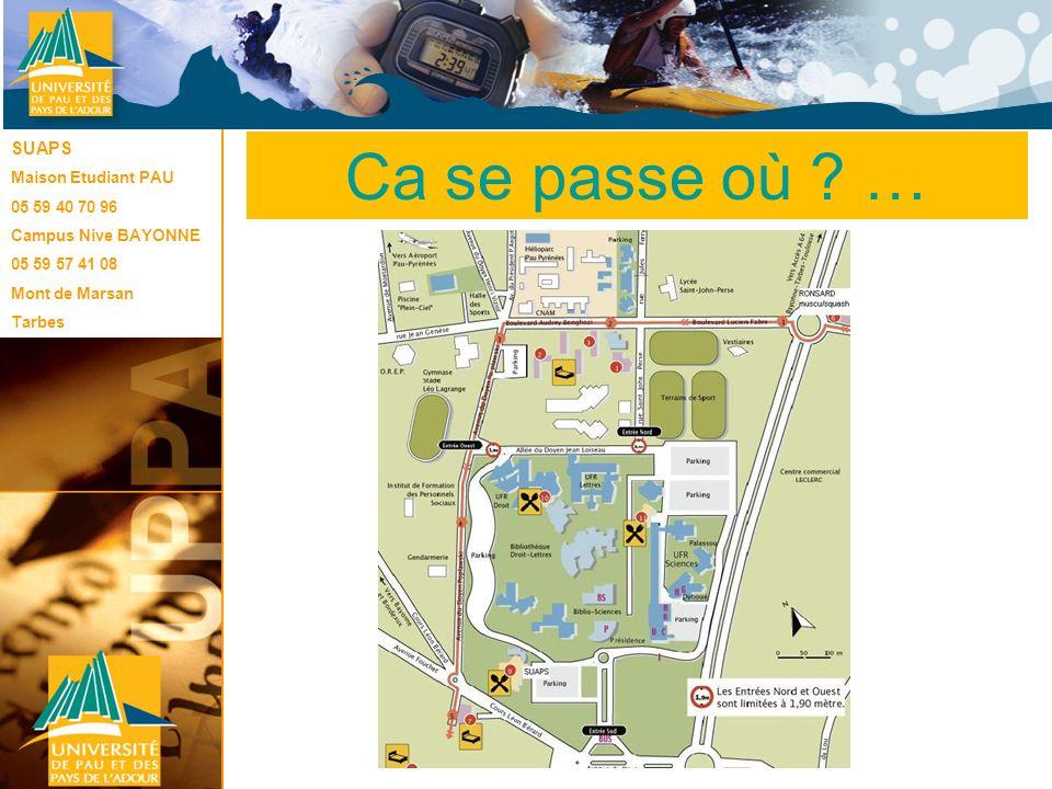 Le SUAPS SUAPS Maison Etudiant PAU 05 59 40 70 96 Campus Nive BAYONNE 05 59 57 41 08 Mont de Marsan Tarbes Ca se passe où ? …