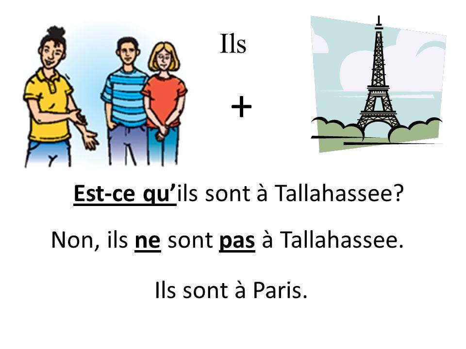 Ils + Ils sont à Paris. Est-ce quils sont à Tallahassee Non, ils ne sont pas à Tallahassee.