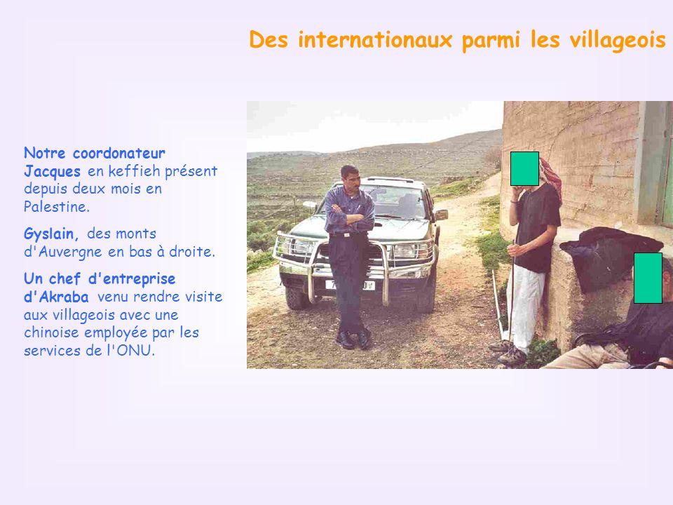 Des internationaux parmi les villageois Notre coordonateur Jacques en keffieh présent depuis deux mois en Palestine.
