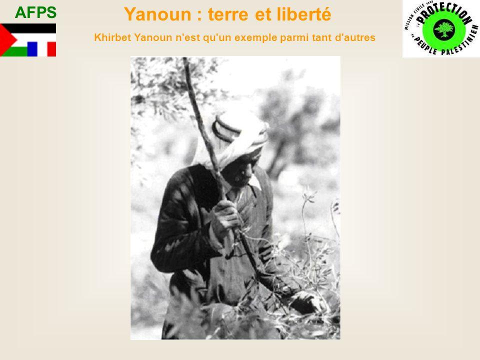 Yanoun : terre et liberté Khirbet Yanoun n est qu un exemple parmi tant d autres AFPS