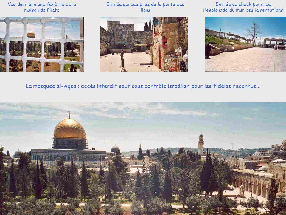Vue derrière une fenêtre de la maison de Pilate Entrée gardée près de la porte des lions Entrée au check point de l esplanade du mur des lamentations La mosquée el-Aqsa : accès interdit sauf sous contrôle israélien pour les fidèles reconnus...