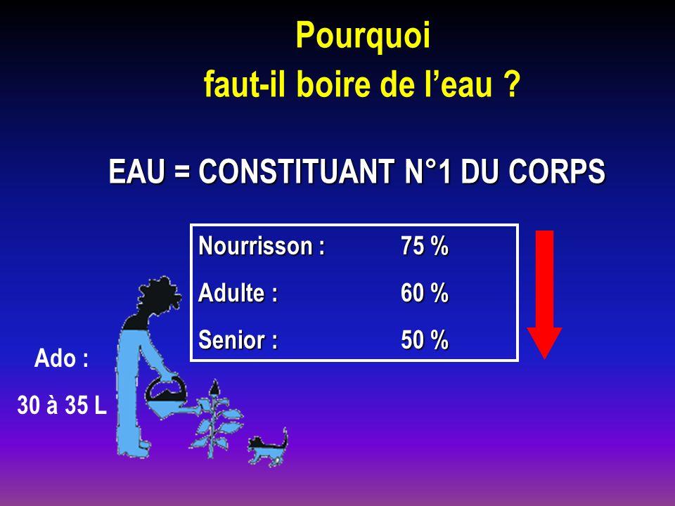 Pourquoi faut-il boire de leau ? Nourrisson : 75 % Adulte : 60 % Senior : 50 % Ado : 30 à 35 L EAU = CONSTITUANT N°1 DU CORPS