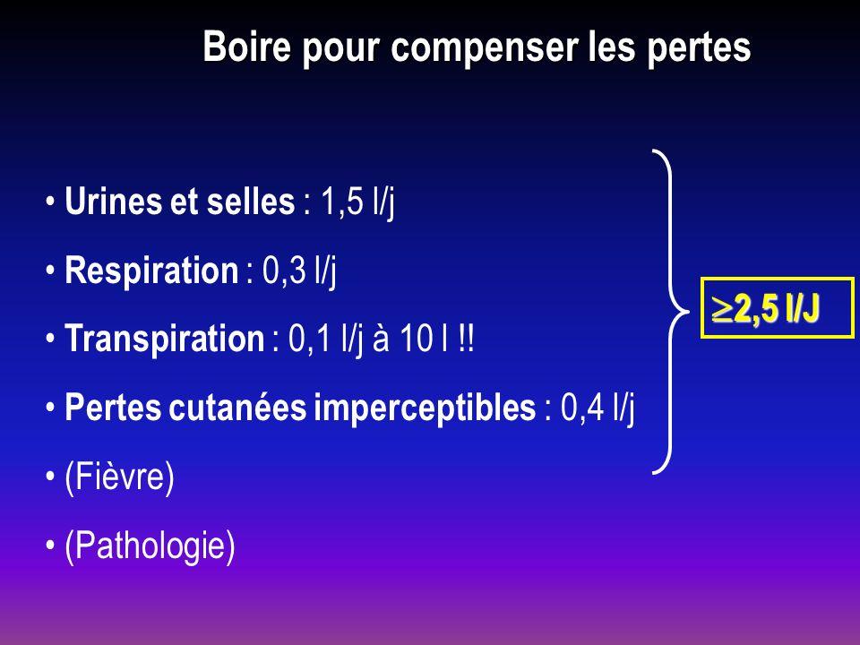 Boire pour compenser les pertes Urines et selles : 1,5 l/j Respiration : 0,3 l/j Transpiration : 0,1 l/j à 10 l !! Pertes cutanées imperceptibles : 0,