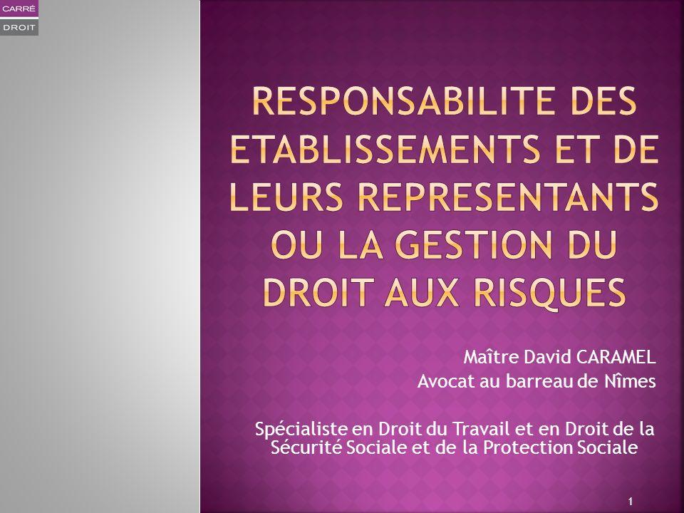 Maître David CARAMEL Avocat au barreau de Nîmes Spécialiste en Droit du Travail et en Droit de la Sécurité Sociale et de la Protection Sociale 1