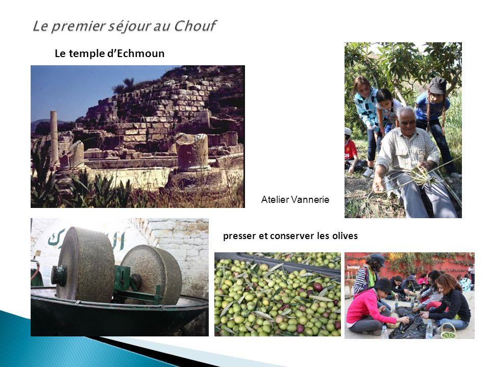 Le temple dEchmoun presser et conserver les olives Atelier Vannerie