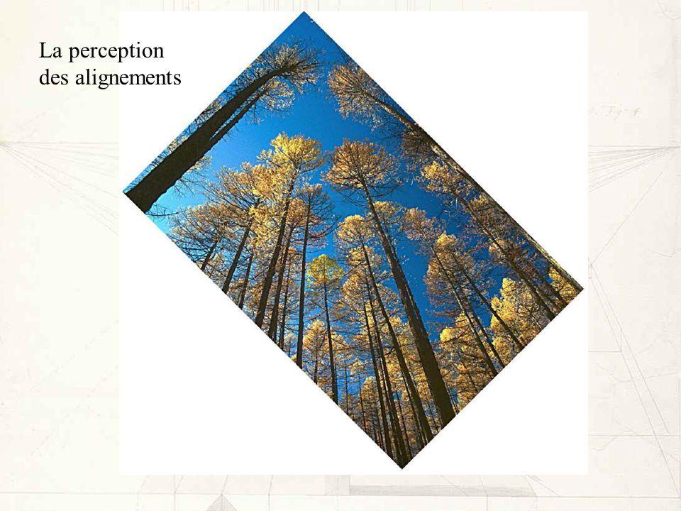 La perception des alignements