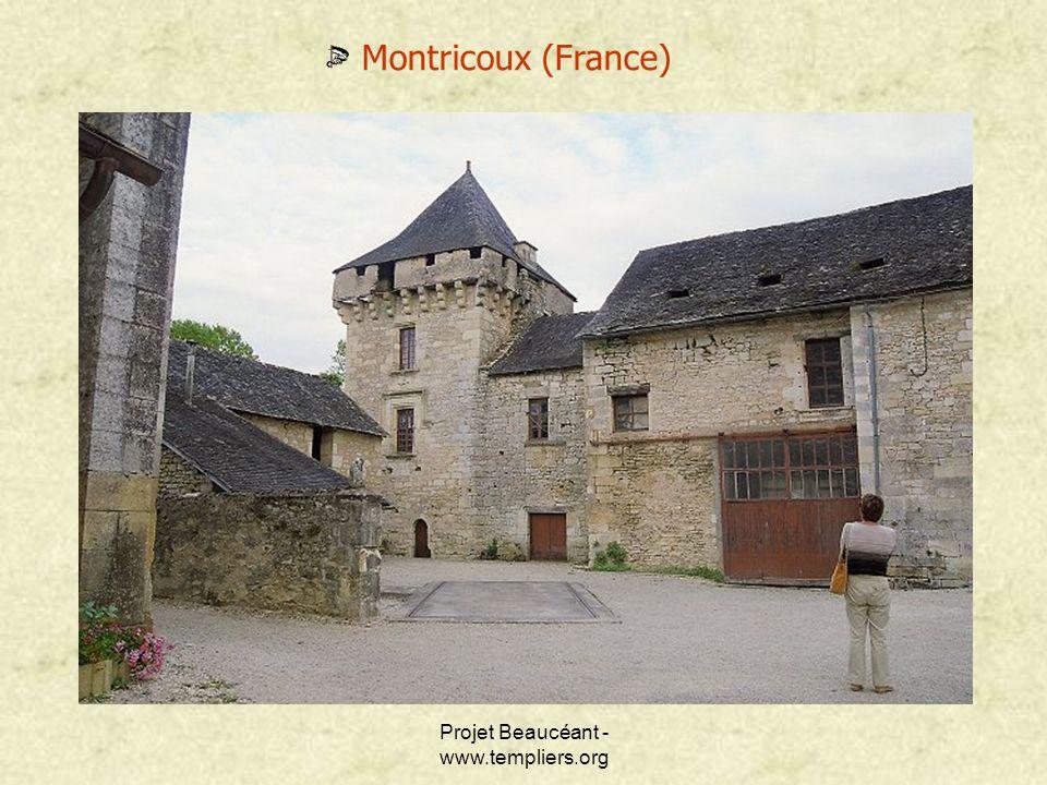 Projet Beaucéant - www.templiers.org Montricoux (France)