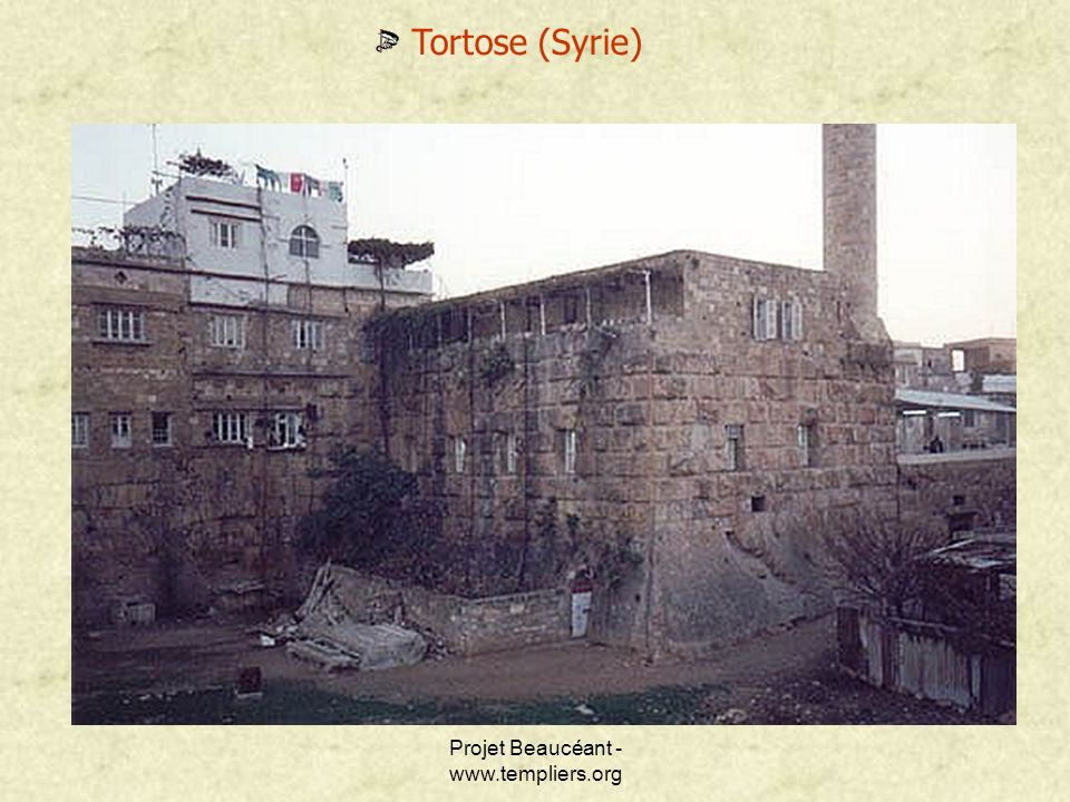 Projet Beaucéant - www.templiers.org Tortose (Syrie)