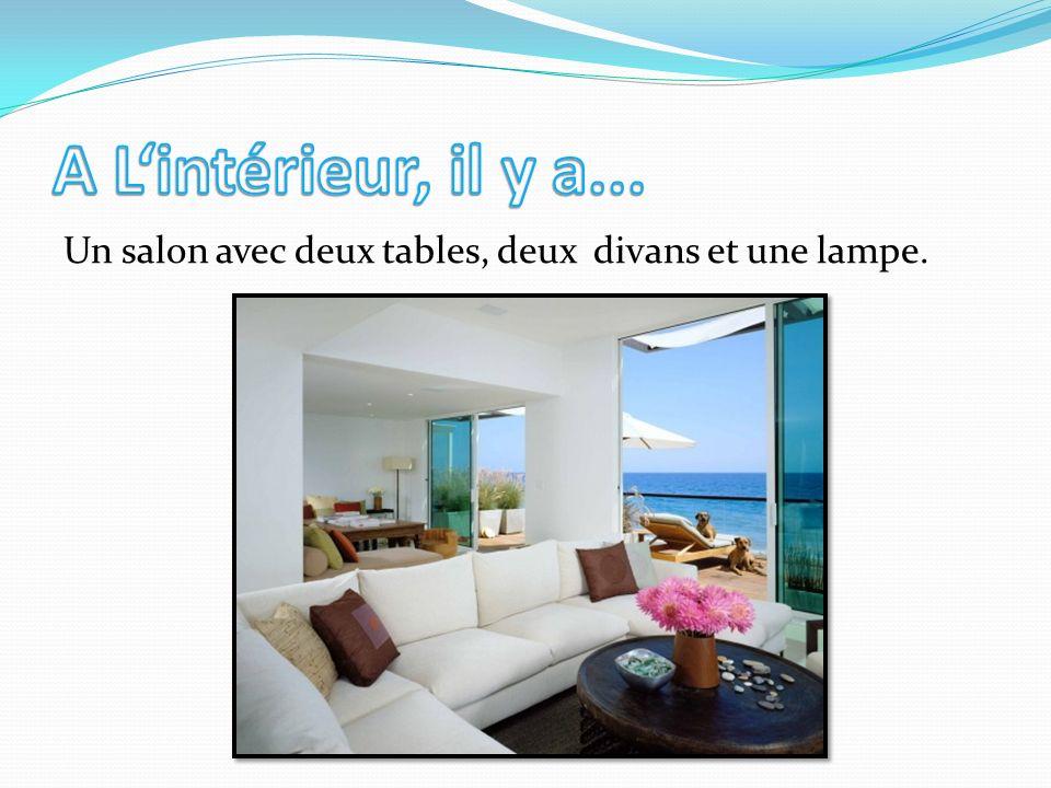 Un salon avec deux tables, deux divans et une lampe.