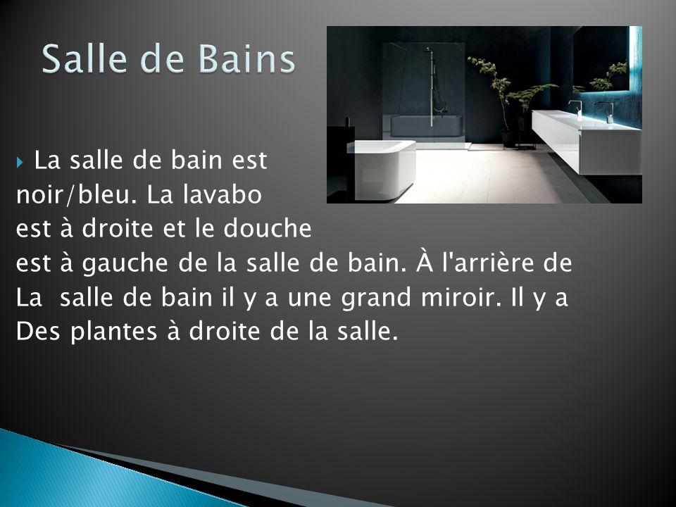 La salle de bain est noir/bleu. La lavabo est à droite et le douche est à gauche de la salle de bain. À l'arrière de La salle de bain il y a une grand