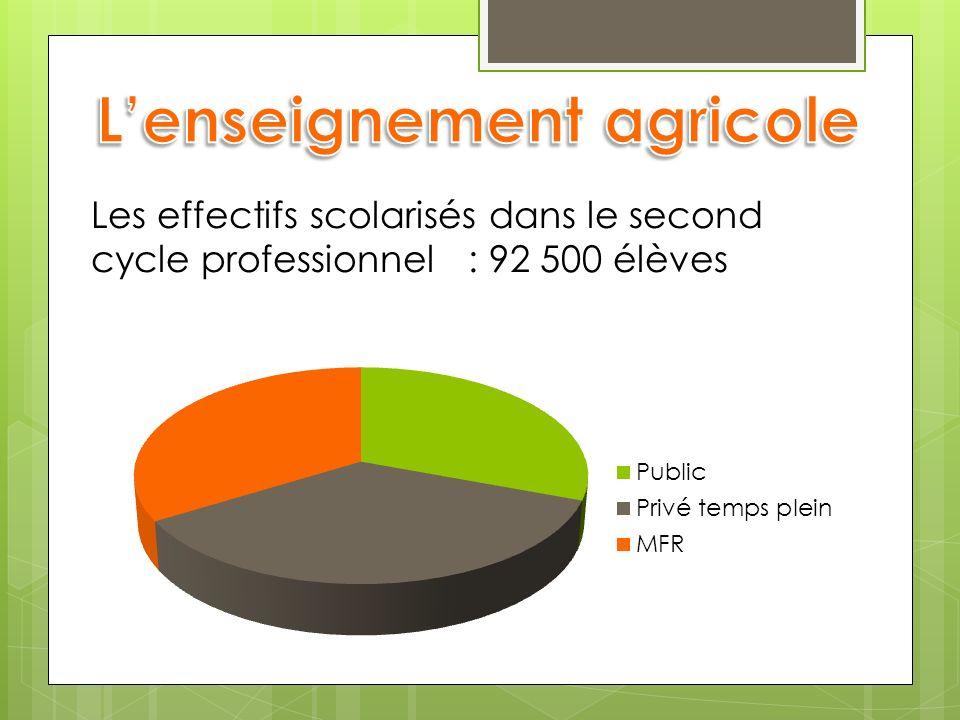 Les effectifs scolarisés dans le second cycle professionnel : 92 500 élèves