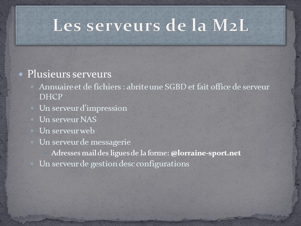 Plusieurs serveurs Annuaire et de fichiers : abrite une SGBD et fait office de serveur DHCP Un serveur dimpression Un serveur NAS Un serveur web Un se