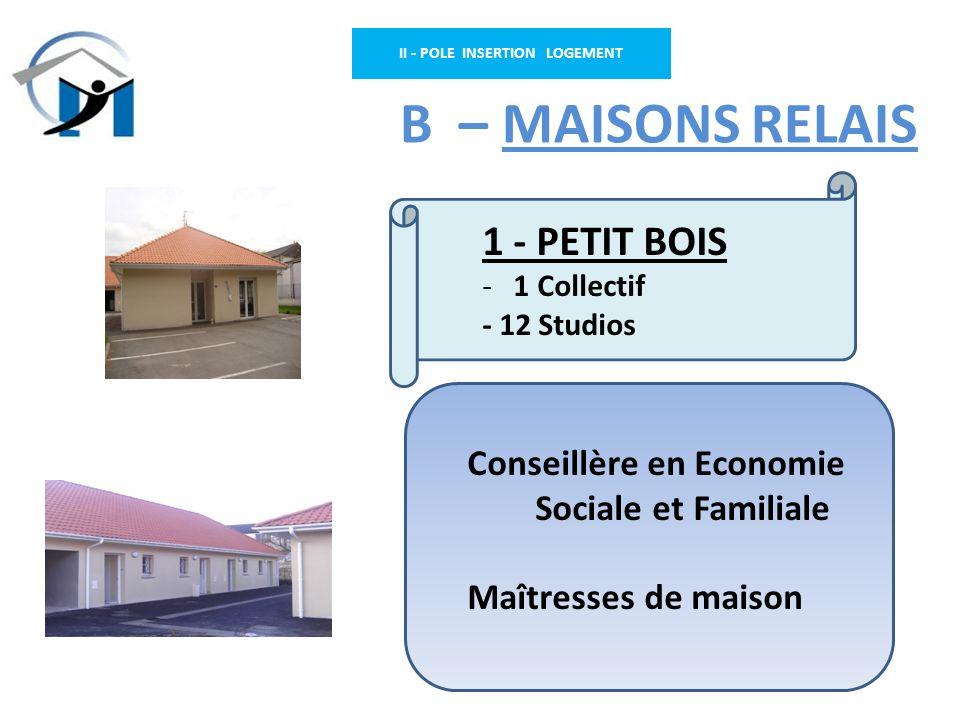 II - POLE INSERTION LOGEMENT B – MAISONS RELAIS Conseillère en Economie Sociale et Familiale Maîtresses de maison 1 - PETIT BOIS - 1 Collectif - 12 St