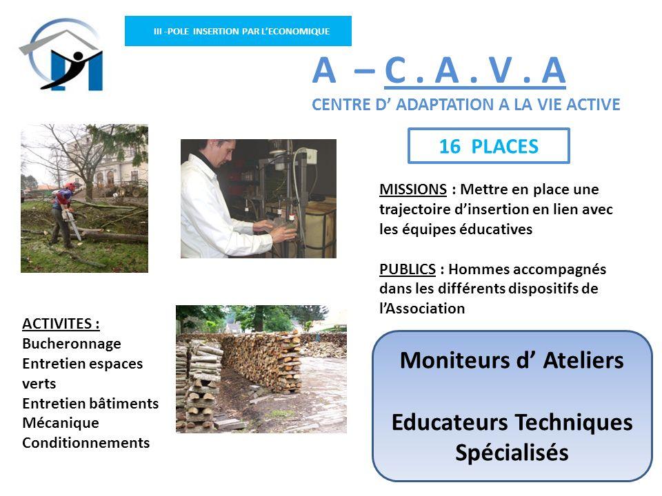 III -POLE INSERTION PAR LECONOMIQUE ACTIVITES : Bucheronnage Entretien espaces verts Entretien bâtiments Mécanique Conditionnements A – C. A. V. A CEN