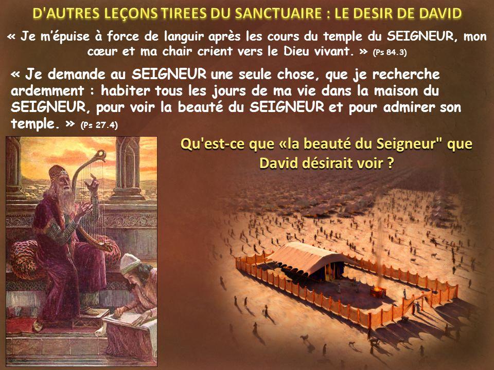 « Je mépuise à force de languir après les cours du temple du SEIGNEUR, mon cœur et ma chair crient vers le Dieu vivant. » (Ps 84.3) « Je demande au SE