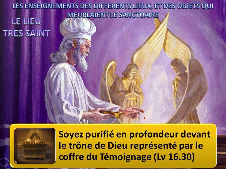 Soyez purifié en profondeur devant le trône de Dieu représenté par le coffre du Témoignage (Lv 16.30)