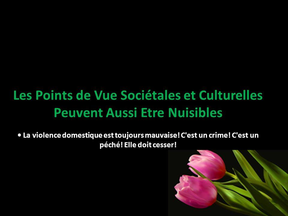 Les Points de Vue Sociétales et Culturelles Peuvent Aussi Etre Nuisibles La violence domestique est toujours mauvaise! C'est un crime! C'est un péché!