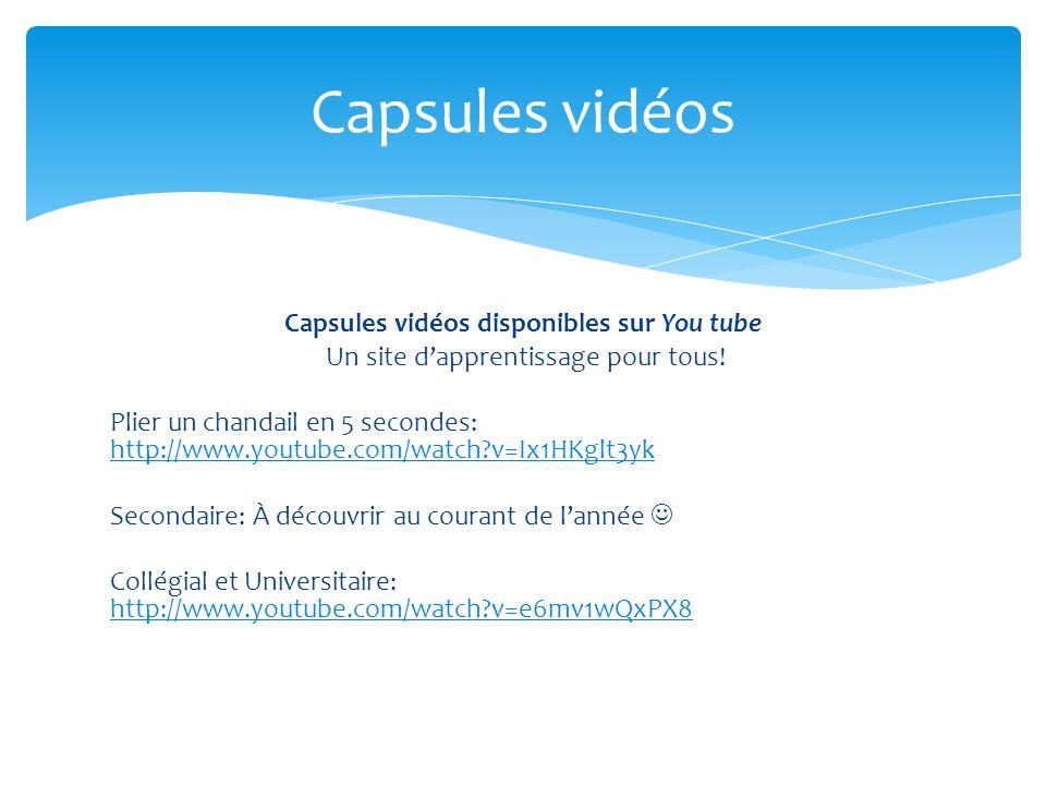 Capsules vidéos disponibles sur You tube Un site dapprentissage pour tous! Plier un chandail en 5 secondes: http://www.youtube.com/watch?v=Ix1HKglt3yk