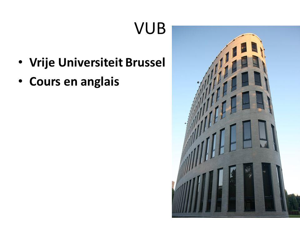 VUB Vrije Universiteit Brussel Cours en anglais