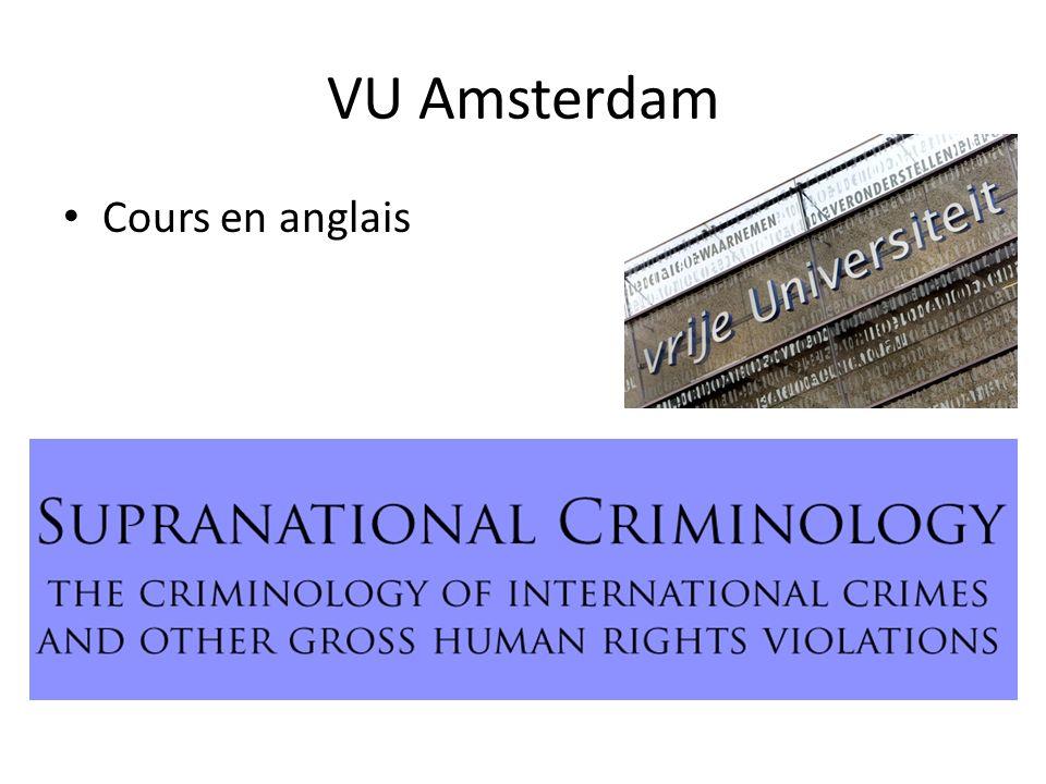 VU Amsterdam Cours en anglais