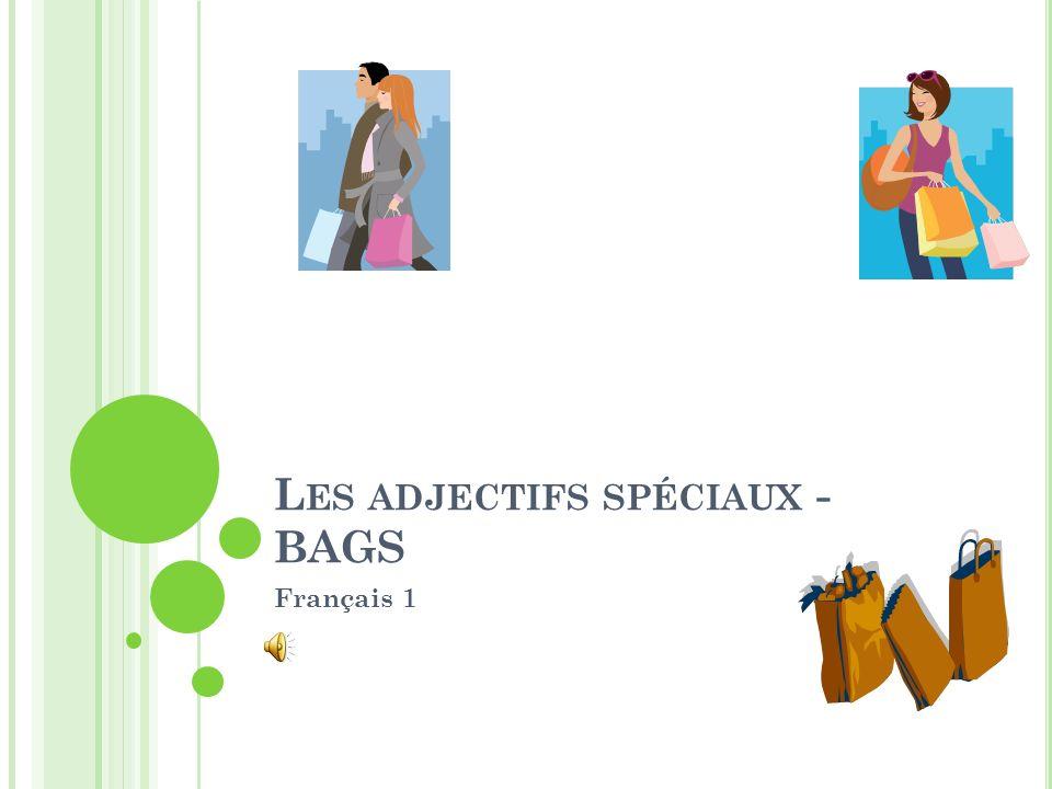 L ES ADJECTIFS SPÉCIAUX - BAGS Français 1