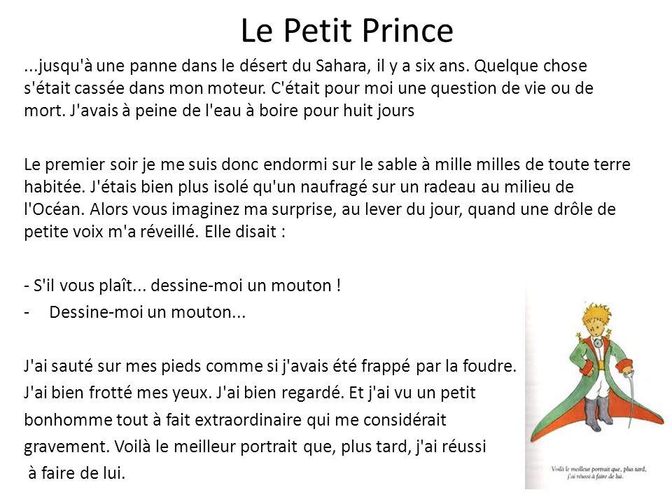 Le Petit Prince...jusqu'à une panne dans le désert du Sahara, il y a six ans. Quelque chose s'était cassée dans mon moteur. C'était pour moi une quest