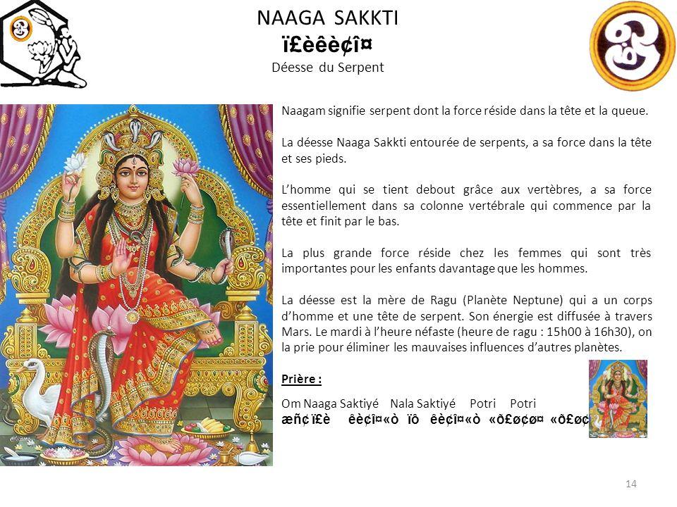 NAAGA SAKKTI ï£èêè¢î¤ Déesse du Serpent Naagam signifie serpent dont la force réside dans la tête et la queue.