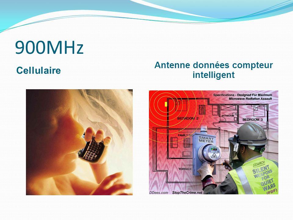 900MHz Cellulaire Antenne données compteur intelligent