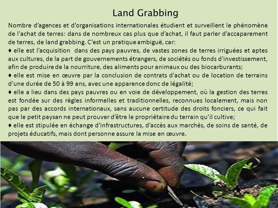 Land Grabbing Nombre dagences et dorganisations internationales étudient et surveillent le phénomène de l achat de terres: dans de nombreux cas plus que dachat, il faut parler daccaparement de terres, de land grabbing.