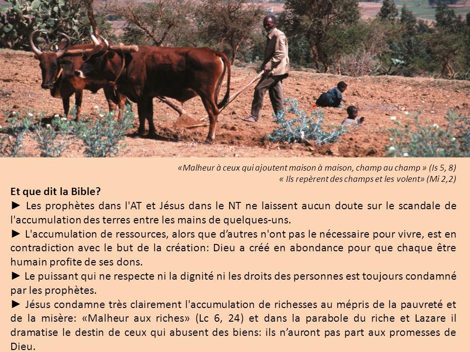 «Malheur à ceux qui ajoutent maison à maison, champ au champ » (Is 5, 8) « Ils repèrent des champs et les volent» (Mi 2,2) Et que dit la Bible.