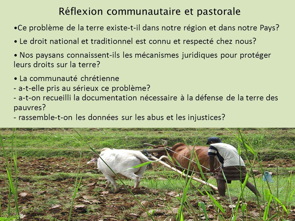 Réflexion communautaire et pastorale Ce problème de la terre existe-t-il dans notre région et dans notre Pays.
