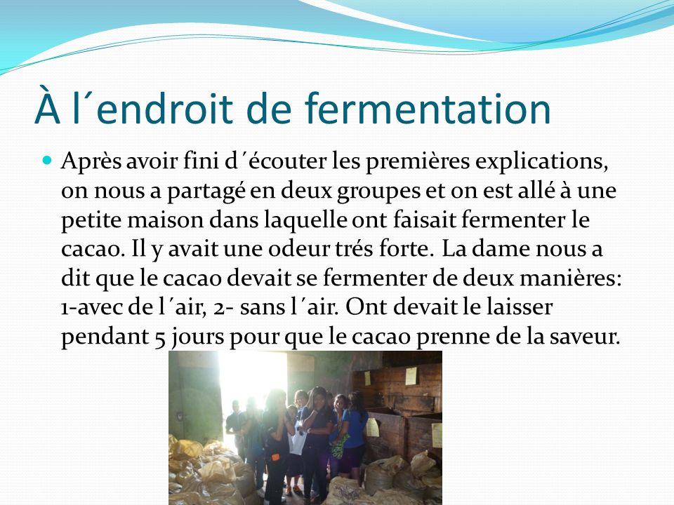 À l´endroit de fermentation Après avoir fini d´écouter les premières explications, on nous a partagé en deux groupes et on est allé à une petite maison dans laquelle ont faisait fermenter le cacao.