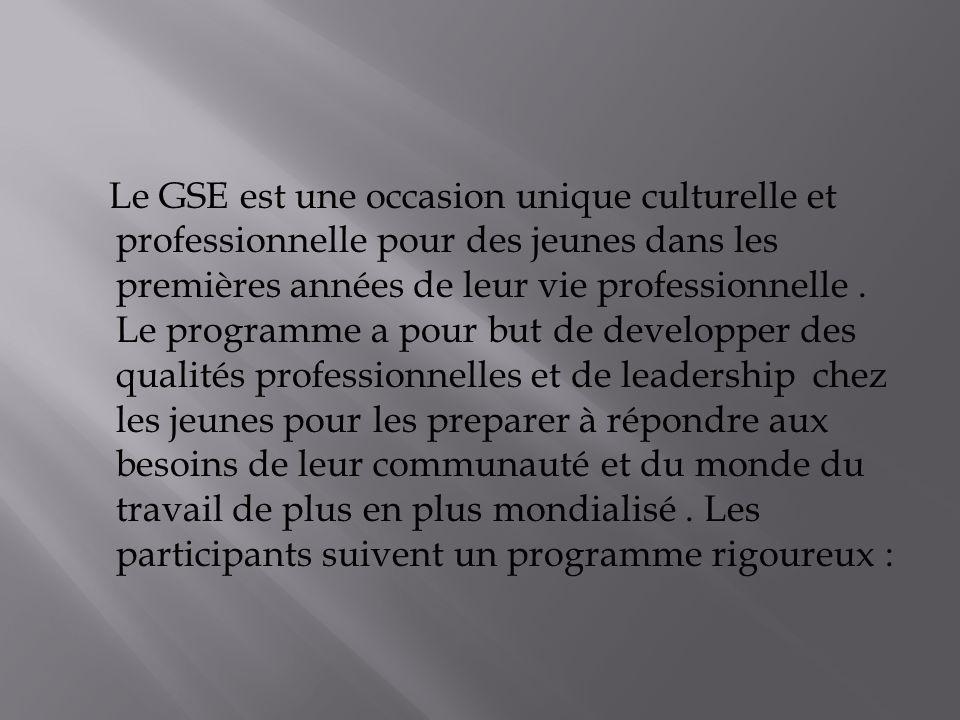 Le GSE est une occasion unique culturelle et professionnelle pour des jeunes dans les premières années de leur vie professionnelle.