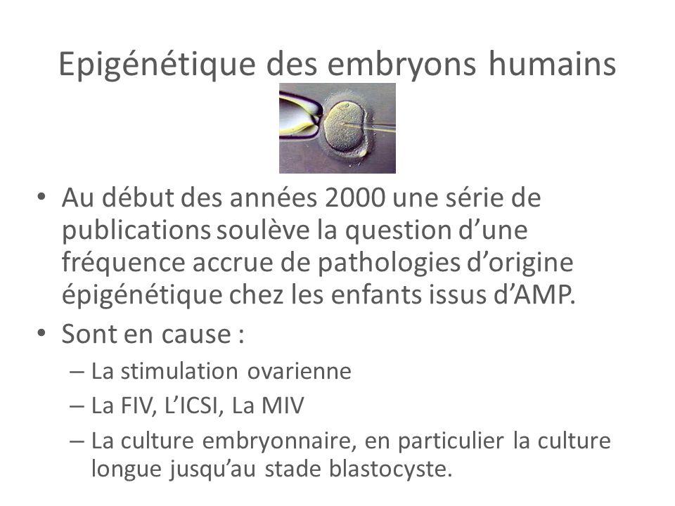 Epigénétique des embryons humains Au début des années 2000 une série de publications soulève la question dune fréquence accrue de pathologies dorigine
