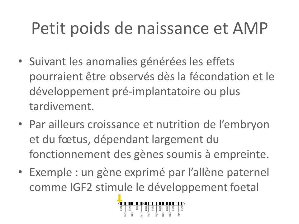 Petit poids de naissance et AMP Suivant les anomalies générées les effets pourraient être observés dès la fécondation et le développement pré-implanta