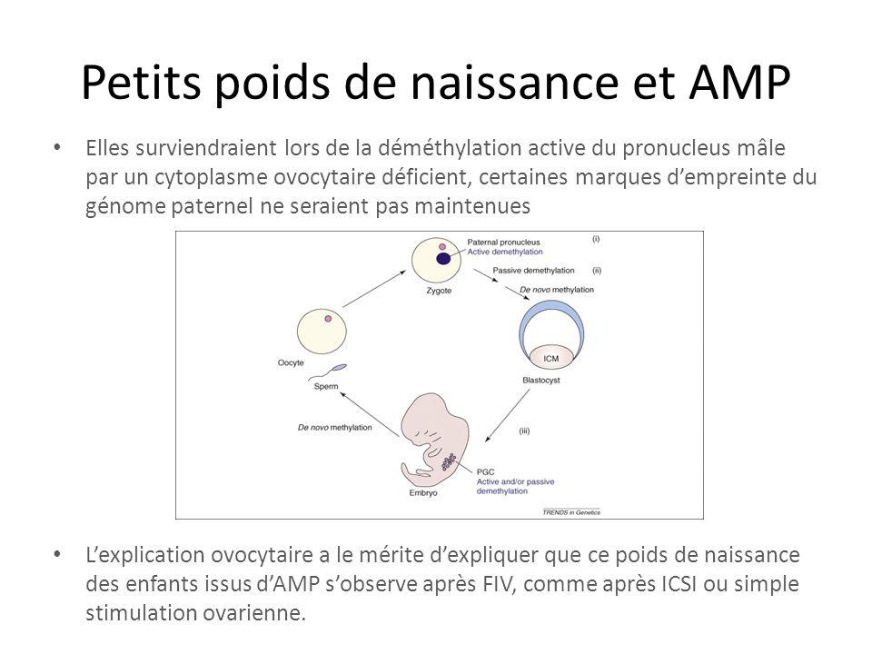 Petits poids de naissance et AMP Elles surviendraient lors de la déméthylation active du pronucleus mâle par un cytoplasme ovocytaire déficient, certa
