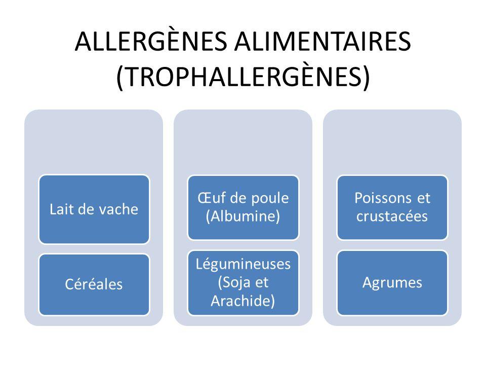 ALLERGIE EN DERMATOLOGIE EXZEMAURTICAIRETOXIDERMIE MEDICAMENTEUSE