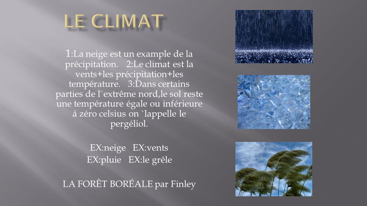 1 :La neige est un example de la précipitation. 2:Le climat est la vents+les précipitation+les température. 3:Dans certains parties de l`extrême nord,
