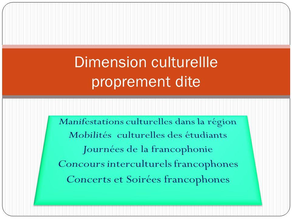 Dimension culturellle proprement dite