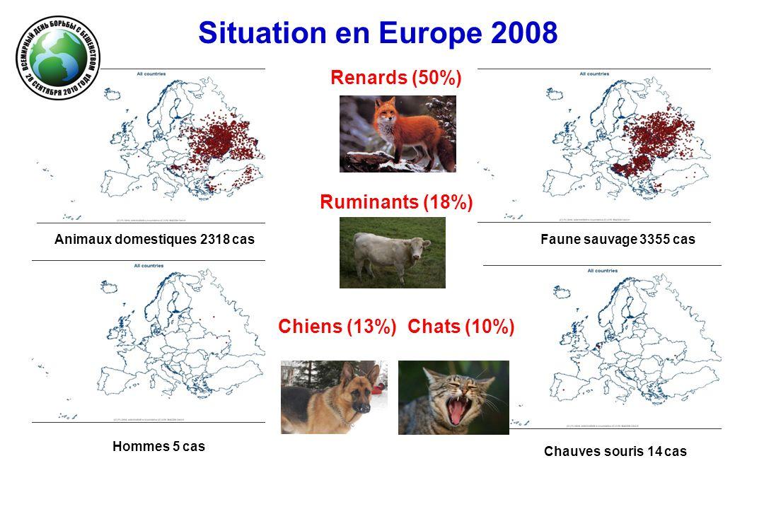 Animaux domestiques 2318 cas Chauves souris 14 cas Faune sauvage 3355 cas Hommes 5 cas Situation en Europe 2008 Renards (50%) Ruminants (18%) Chiens (