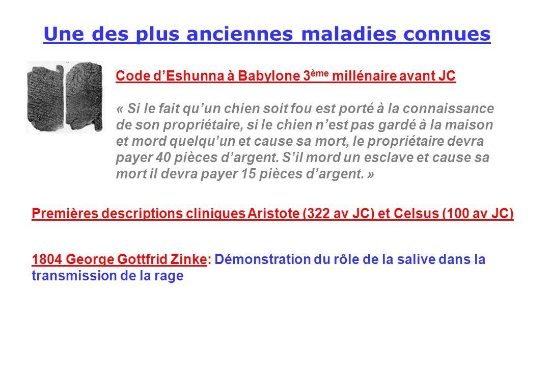 Une des plus anciennes maladies connues Code dEshunna à Babylone 3 ème millénaire avant JC « Si le fait quun chien soit fou est porté à la connaissanc